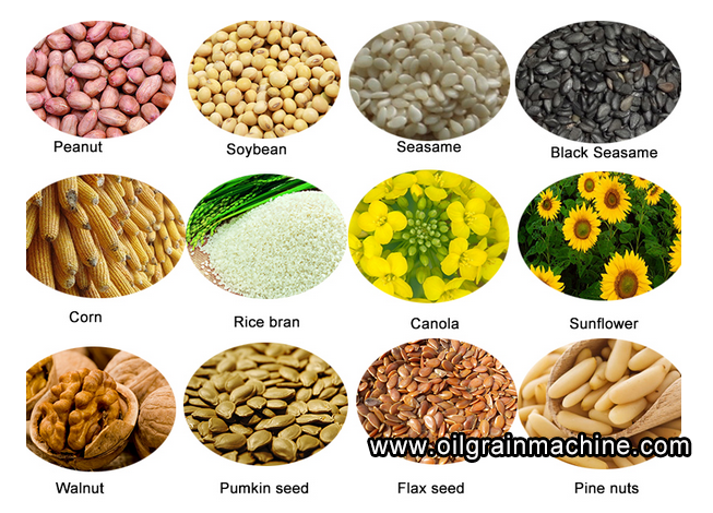 Edible Oil Plants : Vegetable seed oil production line press